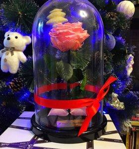 Новогодний подарок. Роза в колбе