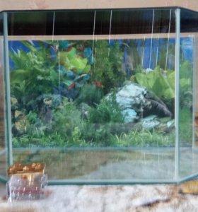 Аквариум для рыбок, хомячков или черепашек