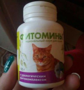 Витамины для кастрированых котов