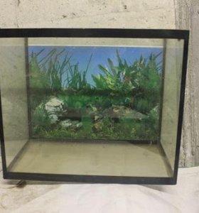 аквариум (прямоугольный)