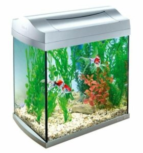 Аквариум Tetra AquaArt Goldfish белый 30 л