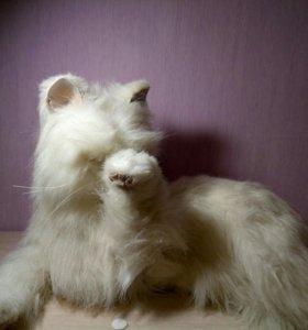 Интерактивная игрушка кошка