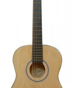 Акустическая гитара Vision бесплатная доставка