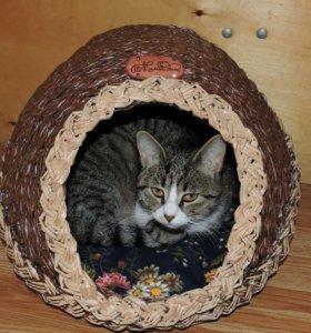Кошкин домик из бумажной лозы.