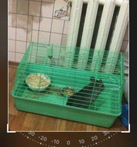Клетка для кролика/шиншиллы