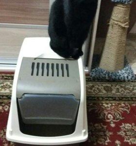 Био. Лоток для котов.