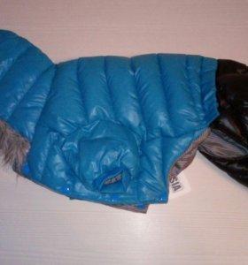 Куртка для собак чихуахуа (20 xxxl)