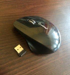 Мышь для ПК