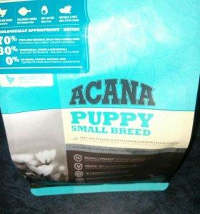 Акана корм для щенков маленьких пород