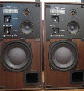 Акустика Радиотехника 35АС-1