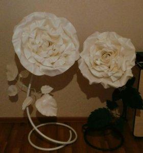 Большая роза,ростовые цветы