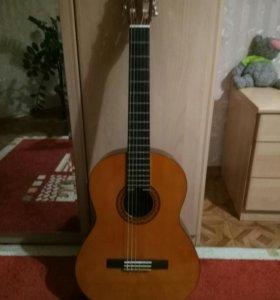 Акустическая гитара YAMAHA C:40 + Утепленный чехол