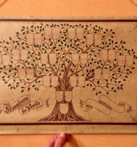 Генеалогическое дерево свиток новый