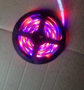 светодиодная лента RGB 12вт -220вт 5 метров