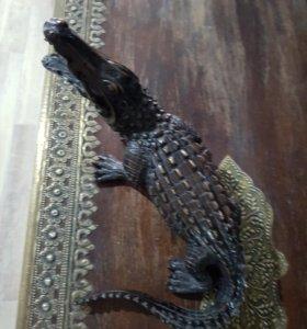 Декор крокодил