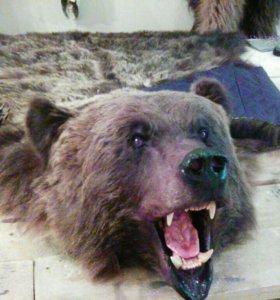 Ковер медведь с объемной головой
