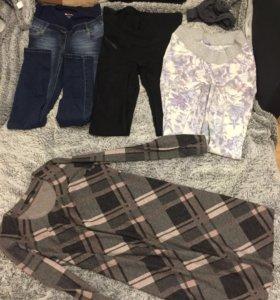 Одежда для беременной 44-46