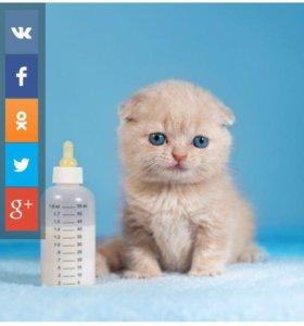 Бутылочка с соской для котят и щенков.