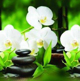 Кухонный фартук ПВХ Белые орхидеи