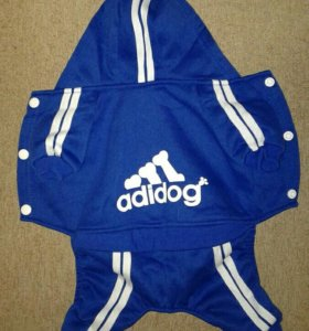 Спортивные костюмы для собачек.