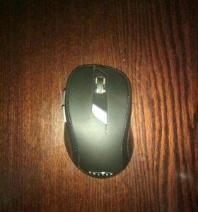 Компютарная мышь