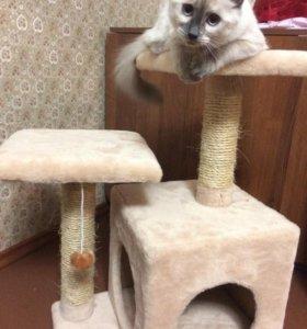 """Домик для кошек с когтеточкой """"Гостеприимная хата"""""""