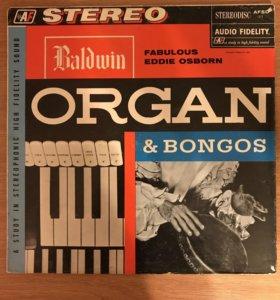 Eddie Osborn – Baldwin Organ & Bongos
