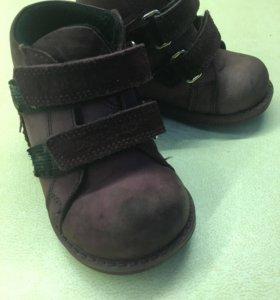 Dandino демисезонные ботинки