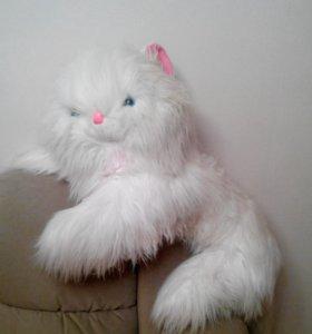 белая собачонка