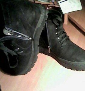 Ботинки замша Вестфалика