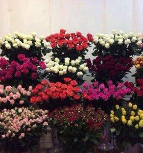 Розы россии и эквадора спб