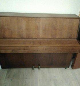 Пианино ronish model super