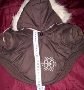 Курточка на Тойчика
