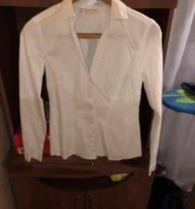 Рубашка, блузка, кофта