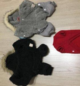 Куртки для собаки