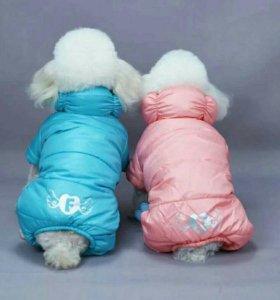 Зимний комбинезон для вашей собачки