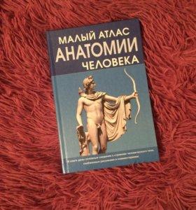 Малый атлас анатомии человека