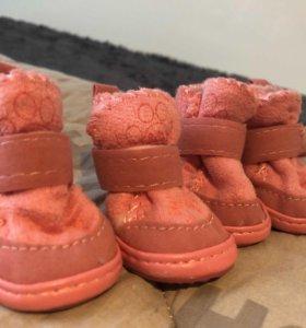 Утеплённые ботинки/сапожки для собаки
