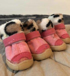 Зимние ботинки/сапожки для маленькой собаки