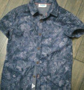 Рубашка акула 116