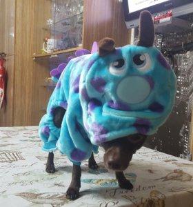 Зимняя одежда для маленьких собачек! Размер XS.
