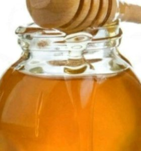 Мед от пчеловода без посредников