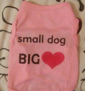 Одежда для собаки или кошки