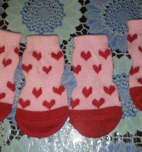 Носки для кошек и собак.