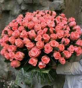 Доставка! Свежие Розы от 50р.