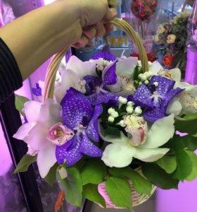 Корзина с орхидеями спб
