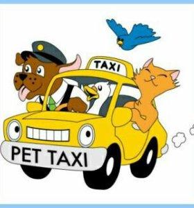 Такси. Пассажирские перевозки по ст. Должанской