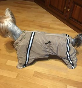 Комбинезон на собаку