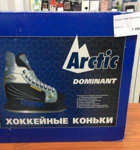 Коньки Arctic Dominant(39)
