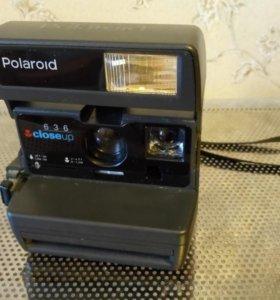 Polarold